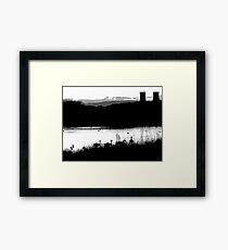 Swans 2 Framed Print