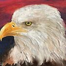 A Bald Eagle with Red and Blue Background by ibadishi