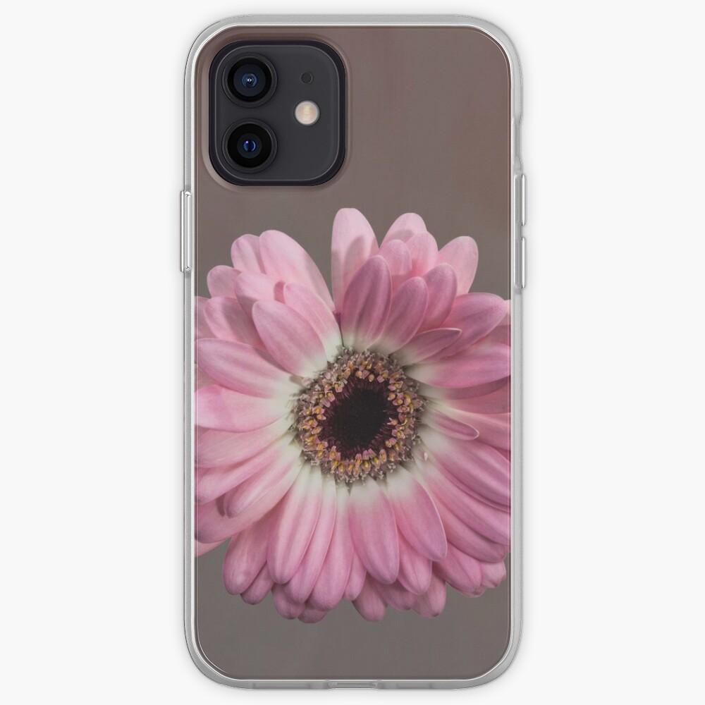 Single pink Gerbera Flower iPhone Case & Cover