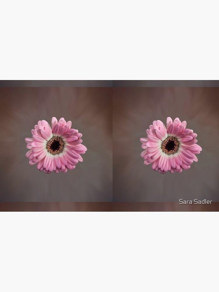Single pink Gerbera Flower by sadler2121