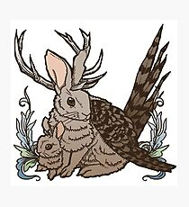 The Wolpertinger Photographic Print