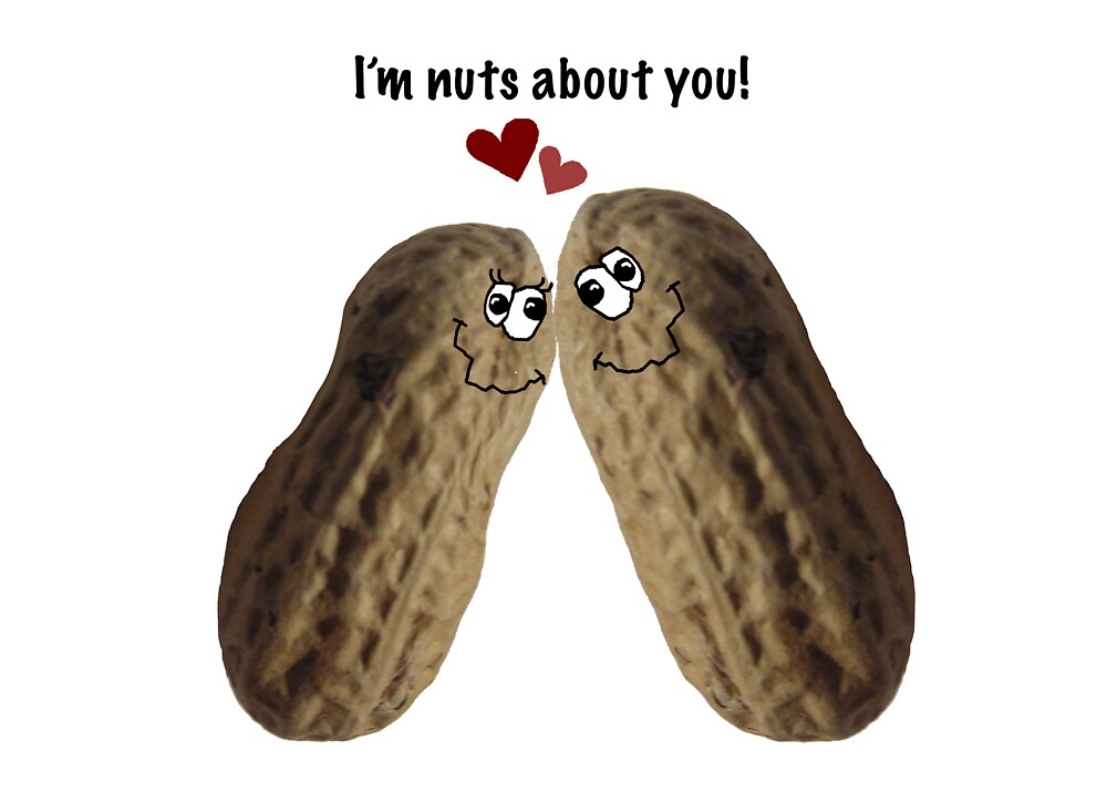 I'm nuts about you! by graphicdoodles