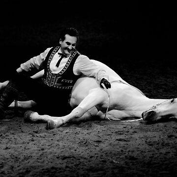 El Caballo Blanco- The bond by natureshues