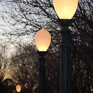 Light the Way! by Lauren01