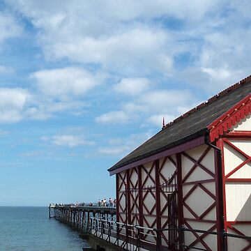 NDVH Saltburn Pier by nikhorne