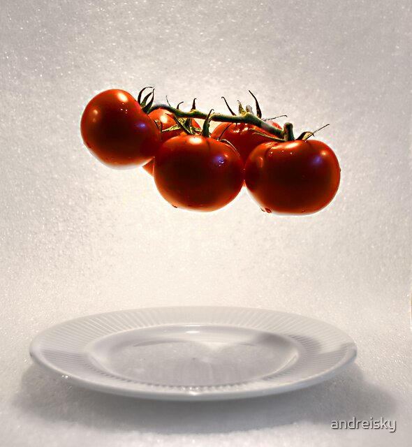 Tomatoes by andreisky