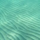 Ocean Dunes by Reef Ecoimages