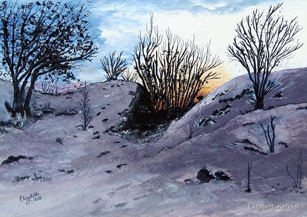 Norway by Elizabeth Kendall