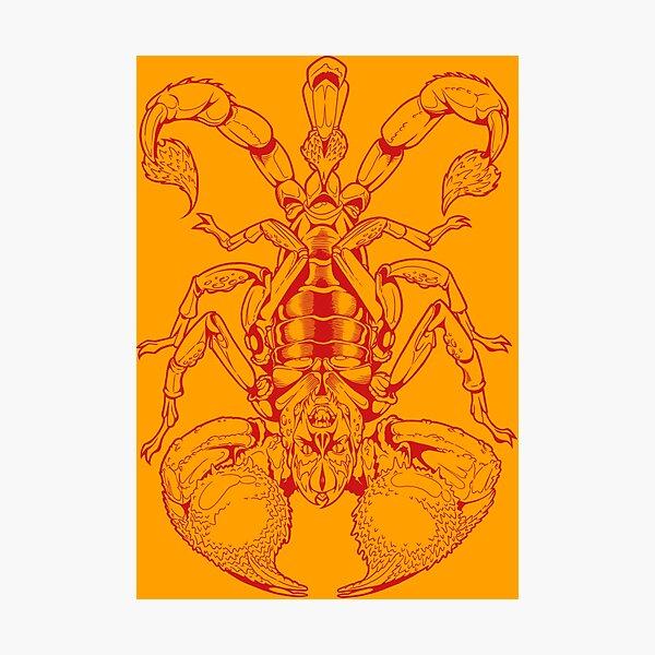 Scorpion (red) Fotodruck