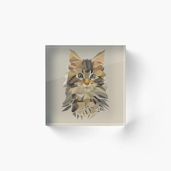 Maine coon Kitten Love Acrylic Block