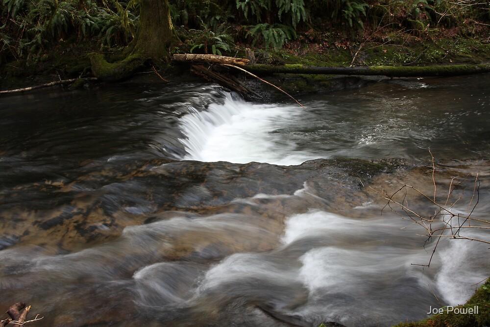 Shotgun Creek by Joe Powell