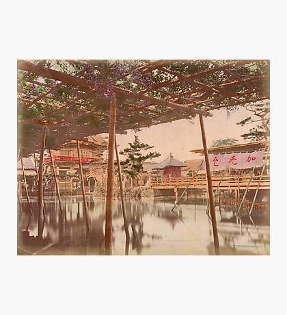 Kameido temple, Tokyo Photographic Print