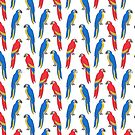 Parrots tropical birds jungle bird parrot art pattern gifts by Andrea Lauren