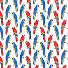 Parrots tropical birds jungle bird parrot art pattern gifts by Andrea Lauren