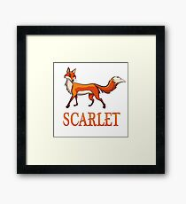 Scarlet Fox Framed Print