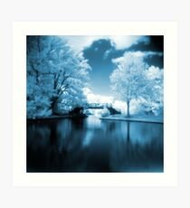 Blue Infrared Park Art Print