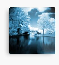 Blue Infrared Park Metal Print