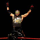 Rey Mysterio by Dawn Mahaney