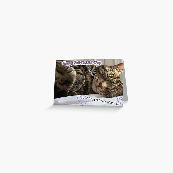 Cute Sleeping Tabby Mother's Day Card Greeting Card