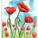 Poppies by Meaghan Roberts