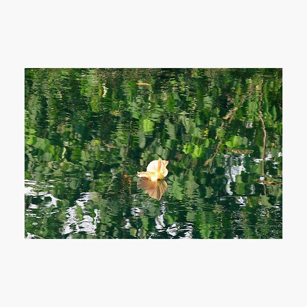Sivoli Reflections II Photographic Print
