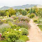 Botanic Garden in Santa Fe by Marilyn Cornwell
