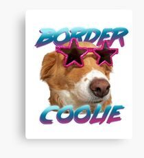 Border Collie Shway Shades Canvas Print