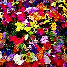 Fallen Autumn Leaves Abstract by Dana Roper
