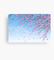 Cherry Blossoms Blue Sky Canvas Print