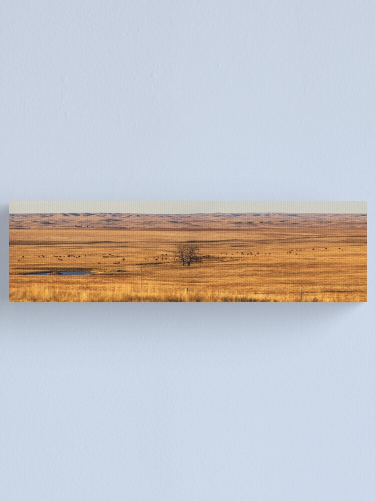 Alternate view of The badlands-South Dakota Canvas Print