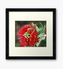 Miniture Brush Framed Print
