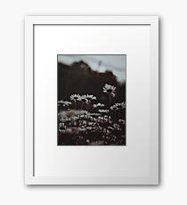 Growing Wild  Framed Print