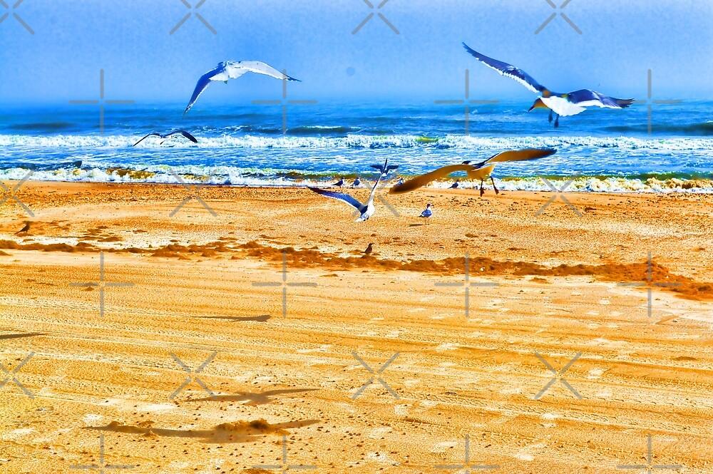 Seagulls On the Beach by SherDigiScraps