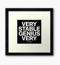 16229-05-BDK – Stable Genius – Very (White) Framed Print