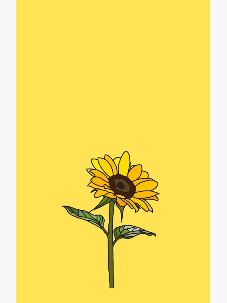 Aesthetic Sunflower  by Rocket-To-Pluto
