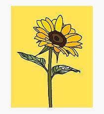 Aesthetic Sunflower  Photographic Print