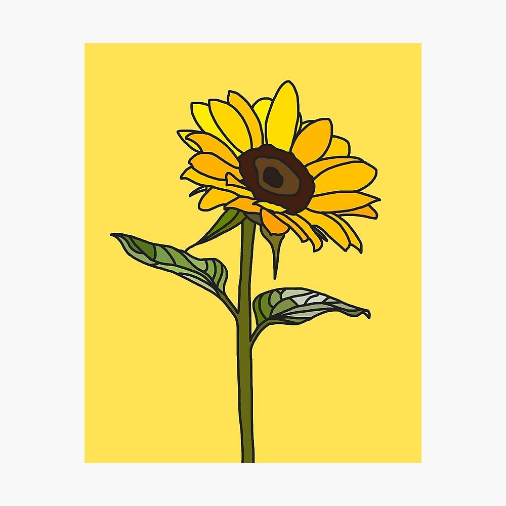 Ästhetische Sonnenblume Fotodruck