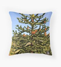 Wollemi Pine - Ancient Tree Throw Pillow