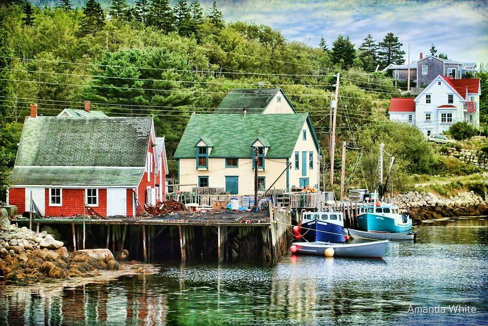 Northwest Cove, Nova Scotia by Amanda White