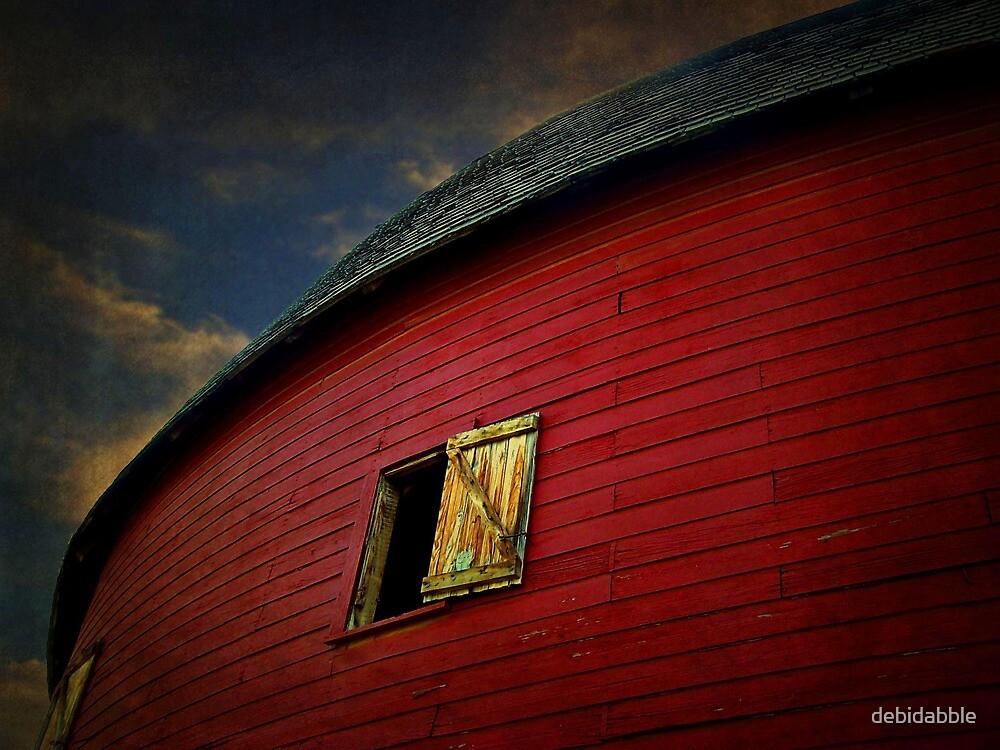 Old Round Barn by debidabble