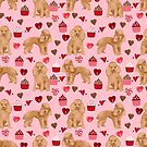 Toy Poodle apricot love cupcakes valentines day hearts dog breed pet portrait dog breeds poodles by PetFriendly