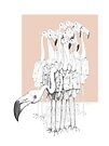 Weird & Wonderful: Flamingo Boys  by VrijFormaat