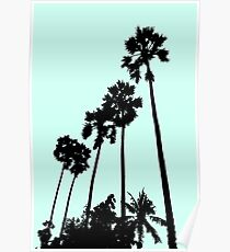 #Palm Poster