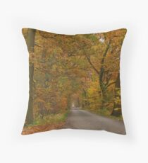 An autumnal country-road Throw Pillow
