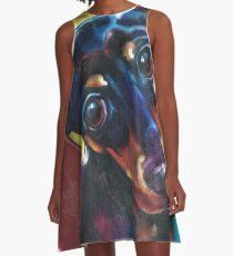 Dachshund  A-Line Dress