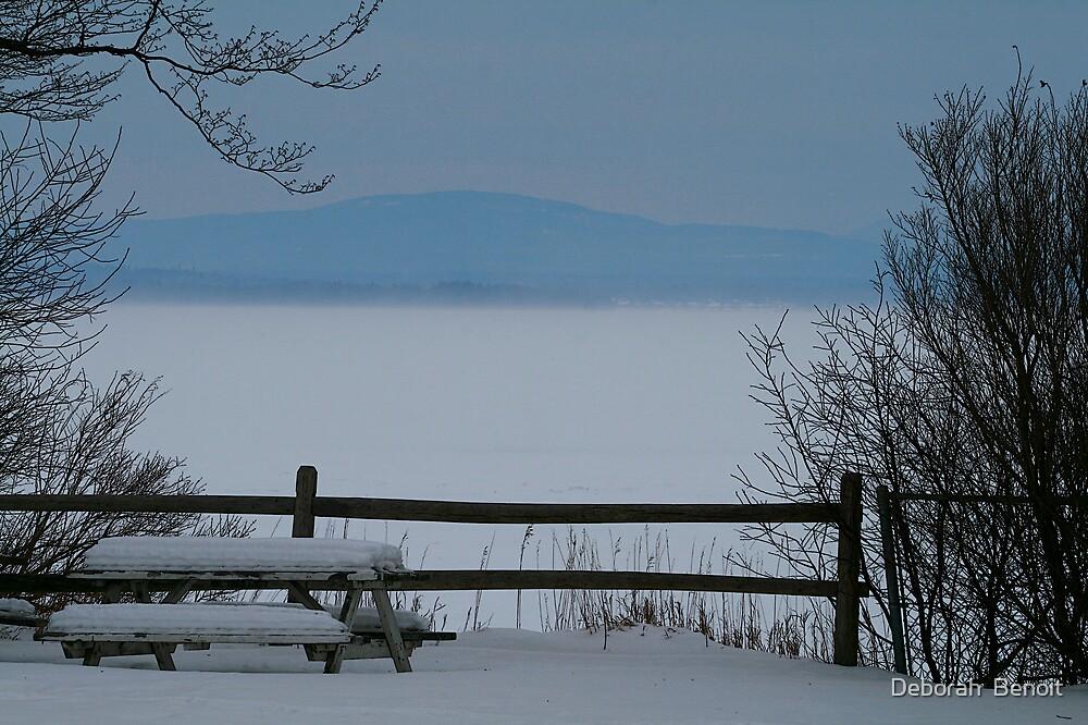 Lake Champlain Winter Scene by Deborah  Benoit