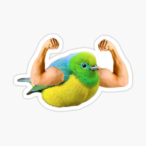 Ripped Bird With Arms Sticker
