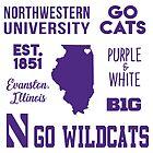 Northwestern University by hcohen2000