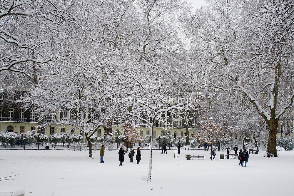 Snowing by Christian  Zammit
