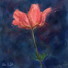 A Loose Painting of a Pink Anemone  by ibadishi